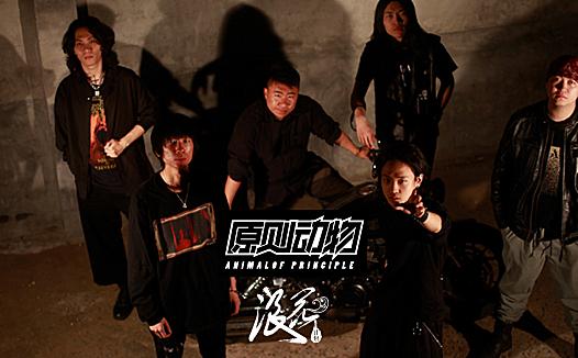原则动物乐队,作品《启示录》- 中国摇滚纪录+浪花计划|独立乐队推荐