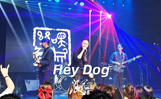 Hey Dog乐队,作品《途中》- 中国摇滚纪录+浪花计划|独立乐队推荐